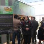 Habitat zéro carbone à Montpellier